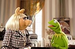 Foto Los teleecos (Muppets) 25