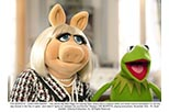 Foto Los teleecos (Muppets)
