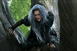 Foto Meryl Streep en Into the Woods 2
