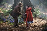 Foto Into the Woods 7